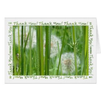 Los dientes de león en la hierba verde le agradece tarjeta pequeña