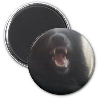 """Los dientes del pastor belga aka """"el lobo negro """" imán redondo 5 cm"""