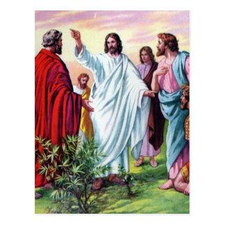 Los discípulos elegidos y enviados postales