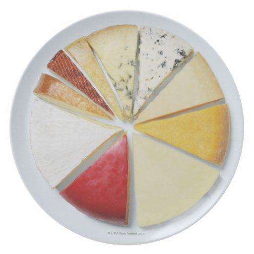 Los diversos pedazos de queso que se asemejan a plato para fiesta