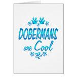 Los Dobermans son frescos Felicitación