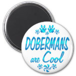 Los Dobermans son frescos Imán Para Frigorífico