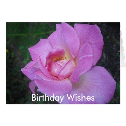 los dobleces gental de un color de rosa, cumpleaño felicitación
