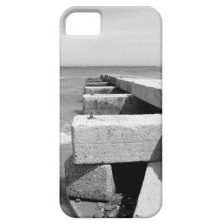 Los doctores Park Beach, el lago Michigan, Milwauk iPhone 5 Coberturas