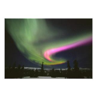 Los E.E.U.U., Alaska, aguas termales de Chena. Aur Cojinete