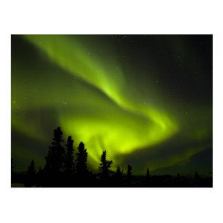Los E.E.U.U., Alaska, aguas termales de Chena. Aur Tarjetas Postales