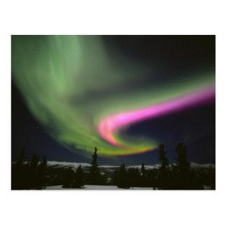 Los E.E.U.U., Alaska, aguas termales de Chena. Tarjetas Postales