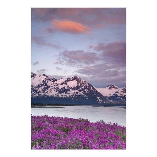 Los E.E.U.U., Alaska, Alsek River Valley. Vista de Fotografia