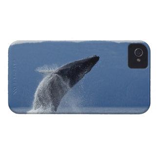 Los E.E.U.U., Alaska, Angoon, ballena jorobada (Me iPhone 4 Case-Mate Cárcasas