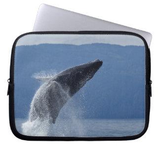 Los E.E.U.U., Alaska, Angoon, ballena jorobada (Me Mangas Computadora