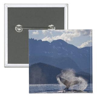 Los E.E.U.U., Alaska, Angoon, Megaptera 3 de la ba Pin Cuadrada 5 Cm