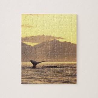 Los E.E.U.U., Alaska, ballena jorobada interior de Rompecabeza