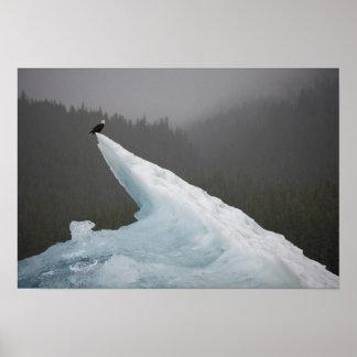 Los E.E.U.U., Alaska, bosque del Estado de Tongass Póster