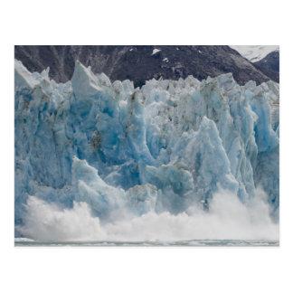 Los E E U U Alaska bosque del Estado de Tongass Tarjeta Postal