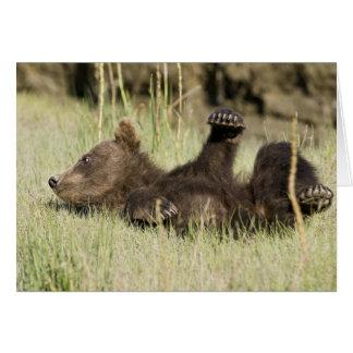 LOS E.E.U.U. Alaska. Cachorro de oso costero de Br Tarjeta De Felicitación