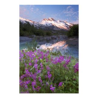 Los E.E.U.U., Alaska, desierto de Alsek-Tatshenshi Foto