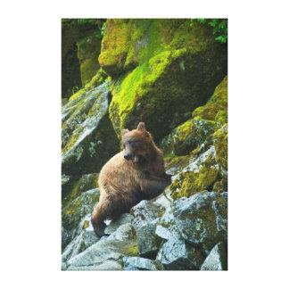 Los E.E.U.U., Alaska. El grisáceo joven refiere la Impresión En Lienzo Estirada