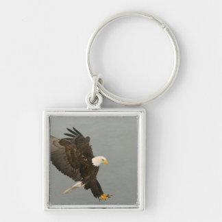 Los E.E.U.U., Alaska, home run. Águila calva en el Llavero Cuadrado Plateado