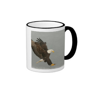 Los E.E.U.U., Alaska, home run. Águila calva en el Taza De Dos Colores