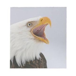 Los E.E.U.U., Alaska, home run. Águila calva que g Blocs