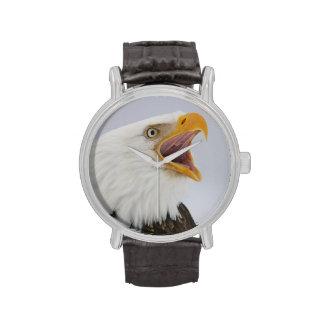 Los E E U U Alaska home run Águila calva que g Relojes