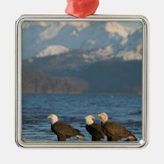 Los E.E.U.U., Alaska, home run, Haliaeetus de Adorno Cuadrado Plateado