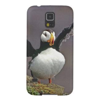 Los E.E.U.U., Alaska, islas de Pribilof, San Jorge Carcasas Para Galaxy S5
