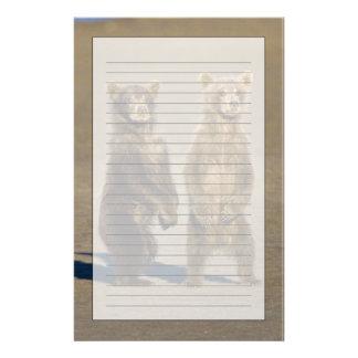 LOS E.E.U.U. Alaska. Los cachorros de oso costeros Papelería