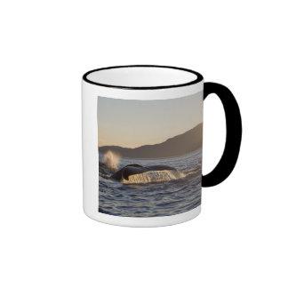 Los E.E.U.U., Alaska, Megaptera de la ballena joro Taza A Dos Colores