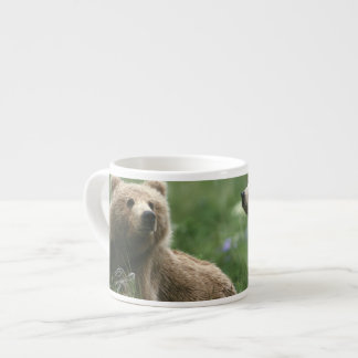 Los E.E.U.U., Alaska, osos marrones del sub-adulto Taza Espresso