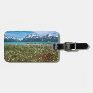 Los E.E.U.U., Alaska, parque nacional 2 del Etiquetas Bolsa