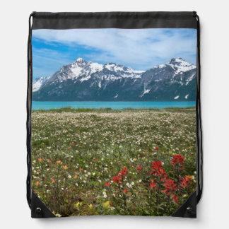 Los E.E.U.U., Alaska, parque nacional 2 del Mochilas