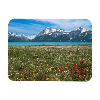 Los E E U U Alaska parque nacional 2 del
