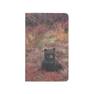 Los E.E.U.U., Alaska, parque nacional de Denali. O Cuaderno