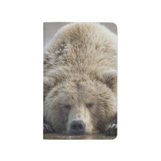 Los E.E.U.U., Alaska, parque nacional de Katmai, Cuaderno