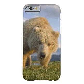 Los E.E.U.U., Alaska, parque nacional de Katmai, Funda De iPhone 6 Slim