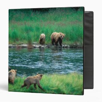 """Los E.E.U.U., Alaska, parque nacional de Katmai, g Carpeta 1 1/2"""""""