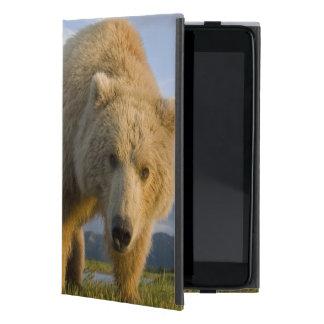Los E.E.U.U., Alaska, parque nacional de Katmai, iPad Mini Cárcasa
