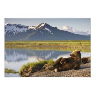 Los E.E.U.U., Alaska, parque nacional de Katmai, o Arte Con Fotos