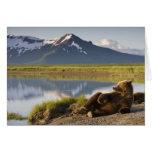 Los E.E.U.U., Alaska, parque nacional de Katmai, o Tarjeta De Felicitación