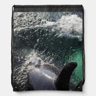 Los E.E.U.U., Alaska, primaveras de Tenakee. Orca Mochilas
