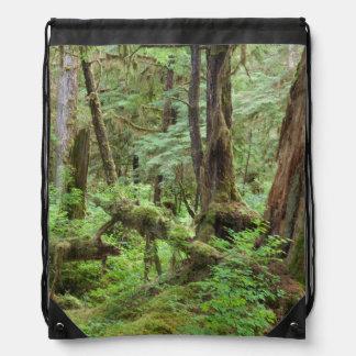 Los E.E.U.U., Alaska. Selva tropical verde en Mochila