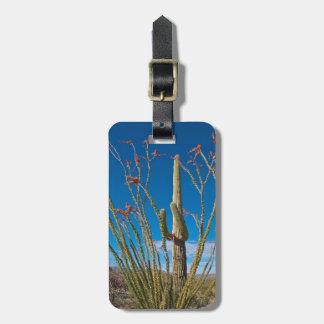 Los E.E.U.U., Arizona. Cactus en parque nacional Etiquetas Maletas