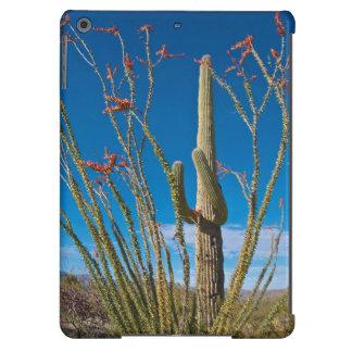 Los E.E.U.U., Arizona. Cactus en parque nacional Funda Para iPad Air