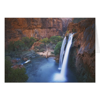 Los E E U U Arizona Gran Cañón caídas de Havas Tarjeton