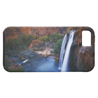 Los E.E.U.U., Arizona, Gran Cañón, caídas de iPhone 5 Fundas