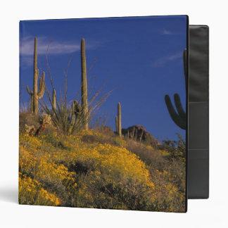 """Los E.E.U.U., Arizona, nacional 2 del cactus del t Carpeta 1 1/2"""""""
