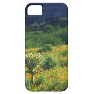 Los E.E.U.U., Arizona, nacional del cactus del Funda Para iPhone 5 Barely There