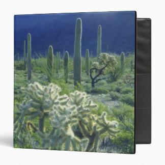 """Los E.E.U.U., Arizona, nacional del cactus del tub Carpeta 1 1/2"""""""