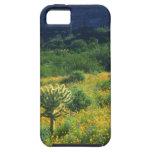 Los E.E.U.U., Arizona, nacional del cactus del tub iPhone 5 Case-Mate Carcasas